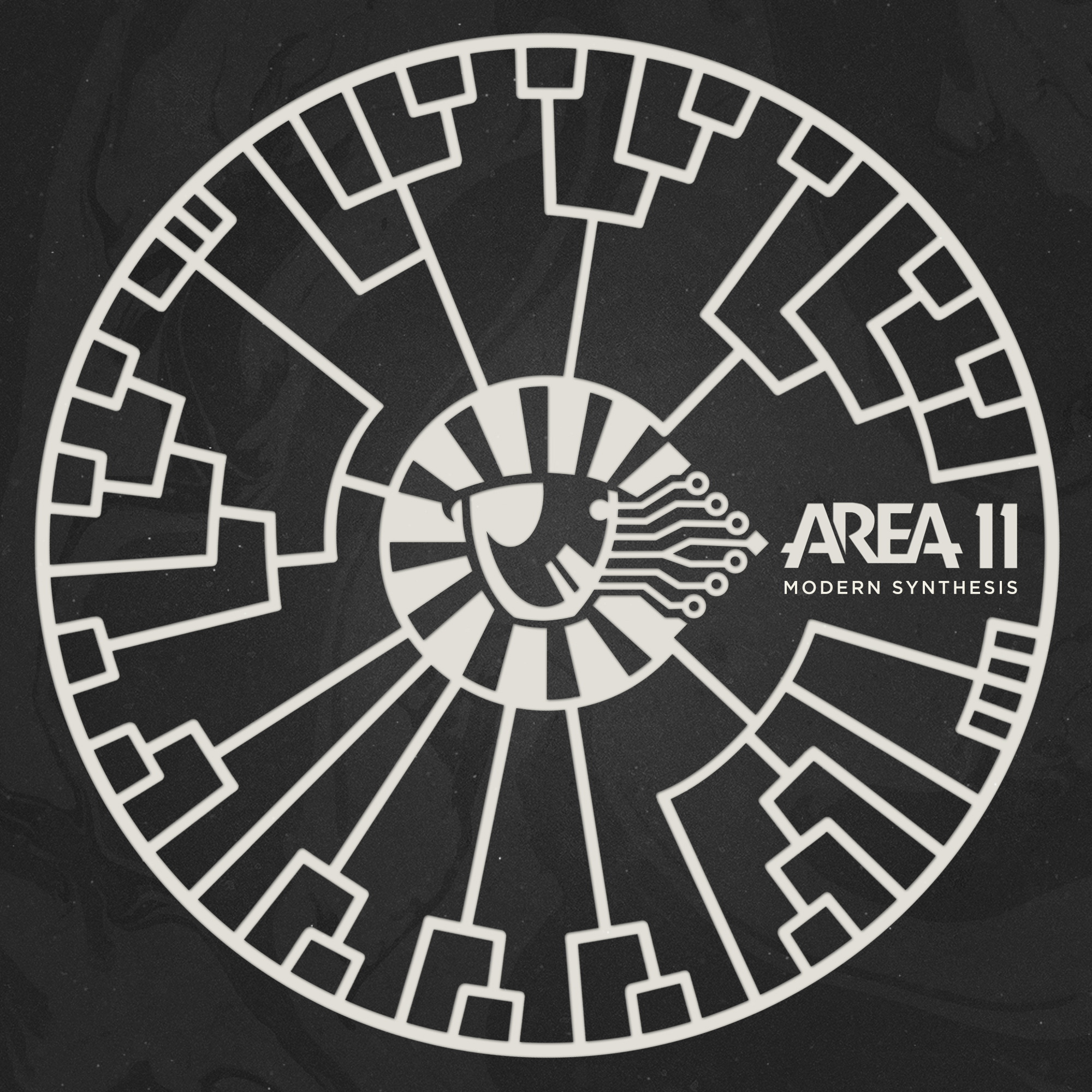 area 11