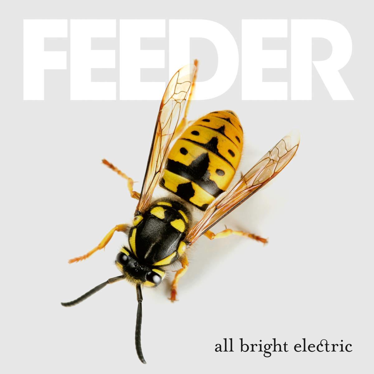 feeder-all_bright_electric_a